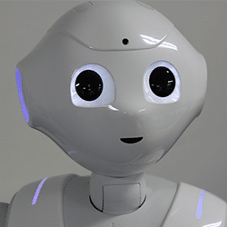 pepper le robot, animation robot pepper petit