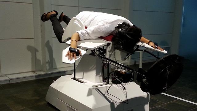 Simulateur d'oiseau vr